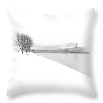 Snowfall On The River Danube At Ybbs Throw Pillow by Menega Sabidussi