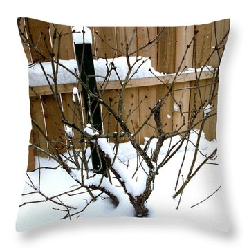 Throw Pillow featuring the photograph Snowfall by Skyler Tipton