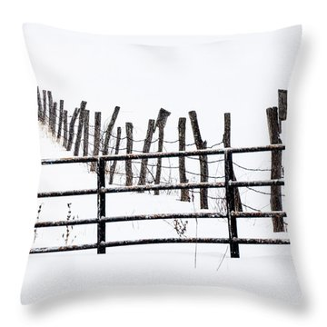 Snowfield Entry - Throw Pillow