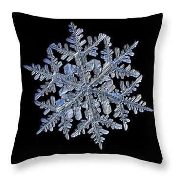 Snowflake Macro Photo - 13 February 2017 - 3 Black Throw Pillow