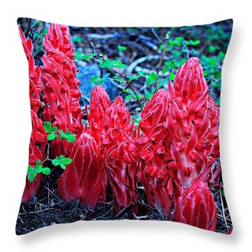 Snowflower Pow Wow Throw Pillow
