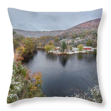 Throw Pillow featuring the photograph Snowliage by Bill Wakeley