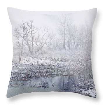 Snowmist Marsh Throw Pillow