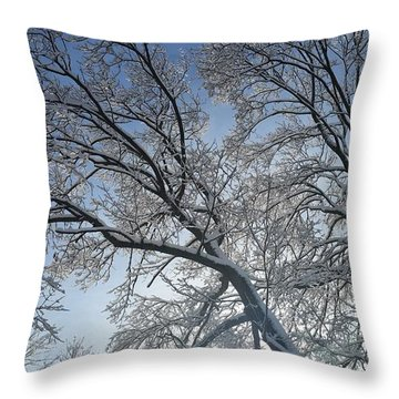Snowshine Throw Pillow