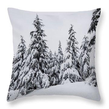 Snowy-1 Throw Pillow