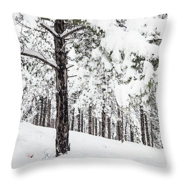 Snowy-4 Throw Pillow