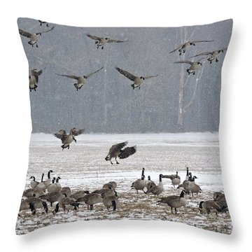 Snowy Approach Throw Pillow
