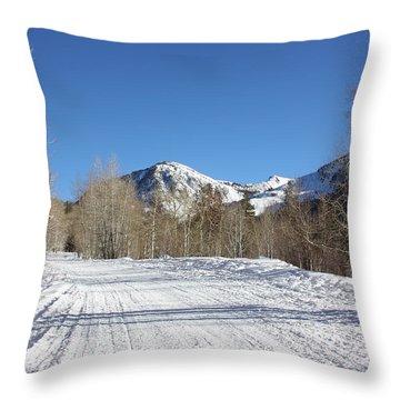 Snowy Aspen Throw Pillow by Kim Hojnacki
