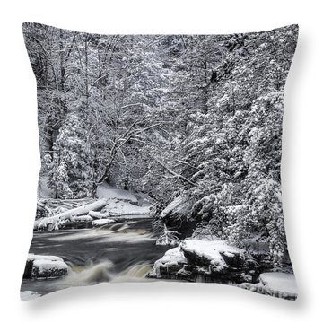 Snowy Blackwater Throw Pillow