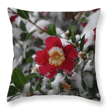 Snowy Camelia Throw Pillow