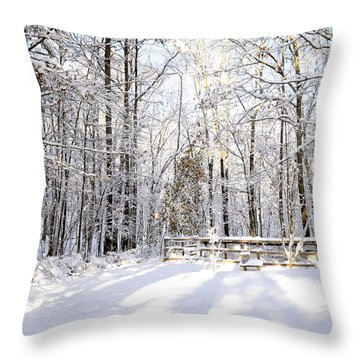 Snowy Chicken Coop Throw Pillow
