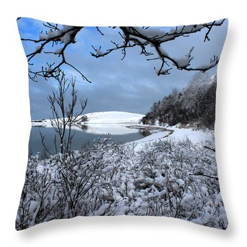 Snowy Cove Port Jefferson New York Throw Pillow by Bob Savage