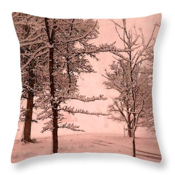 Throw Pillow featuring the photograph Snowy Day In Rose by Michelle Audas