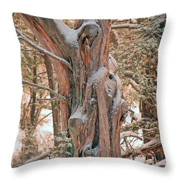 Snowy Dead Tree Throw Pillow by Donna Greene