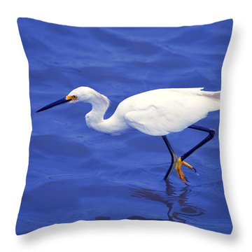 Snowy Egret 1 Throw Pillow by Bill Holkham