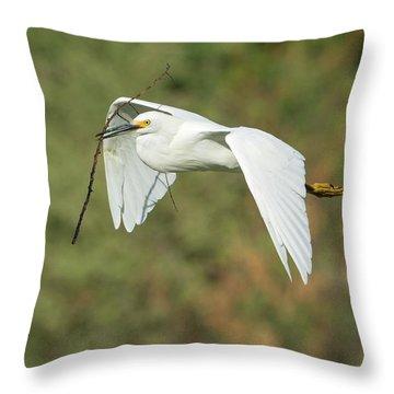 Snowy Egret 4786-091017-1cr Throw Pillow