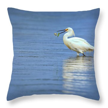 Snowy Egret At Dinner Throw Pillow by Rick Berk