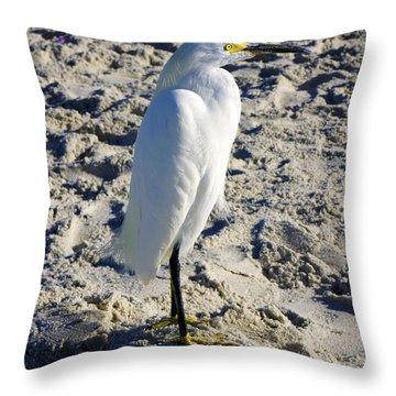 Snowy Egret At Naples, Fl Beach Throw Pillow