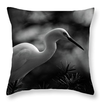 Snowy Egret Bw Throw Pillow by Travis Burgess
