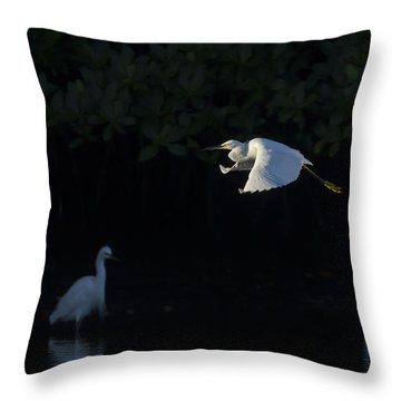 Snowy Egret Gliding In The Morning Light Throw Pillow