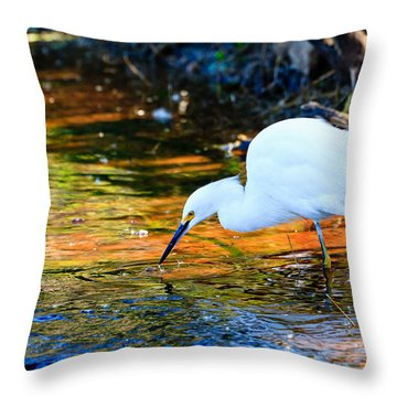 Snowy Egret Hunting 2 Throw Pillow