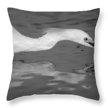 Throw Pillow featuring the photograph Snowy Egret Illuminated by John F Tsumas