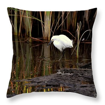 Snowy Egret In Late Afternoon Throw Pillow