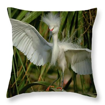Snowy Egret In The Trees Throw Pillow by Myrna Bradshaw
