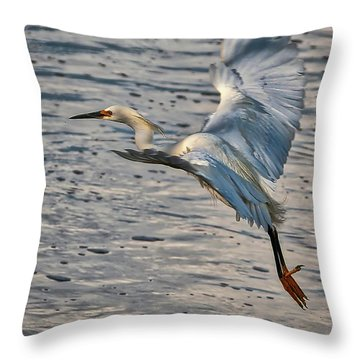 Snowy Egret Landing Throw Pillow