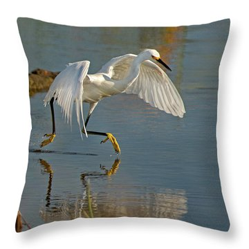 Snowy Egret On The Move Throw Pillow