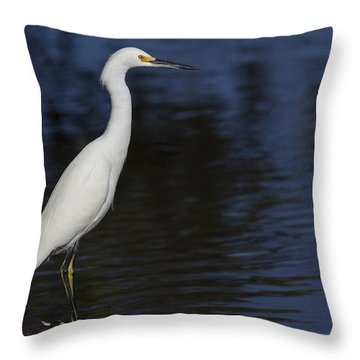 Snowy Egret Perched On A Rock Throw Pillow