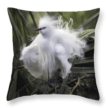 Snowy Egret Ruffled Throw Pillow