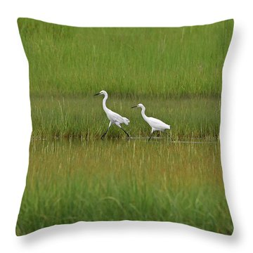 Snowy Egrets Throw Pillow