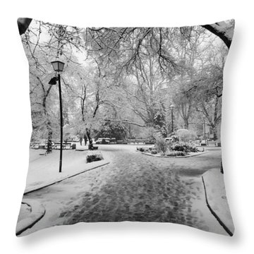 Snowy Entrance To The Park Throw Pillow by Rae Tucker