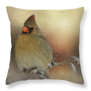 Snowy Female Cardinal Throw Pillow