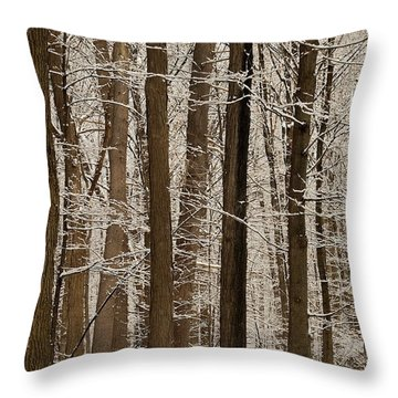 Snowy Forest Elevation Throw Pillow