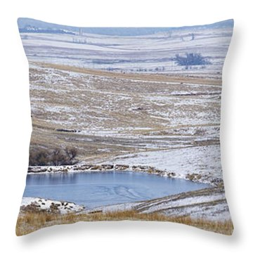 Throw Pillow featuring the photograph Snowy Hills 2 by Rob Graham