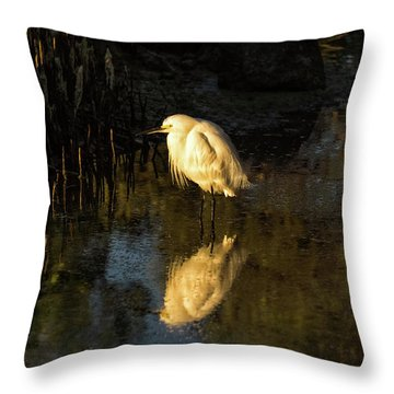 Snowy Kissed By Last Light Throw Pillow