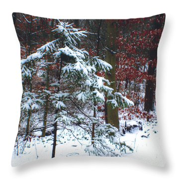 Snowy Little Fir Throw Pillow