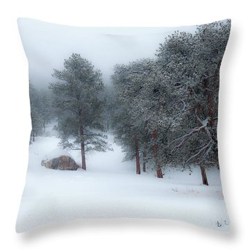 Snowy Morning - 0622 Throw Pillow