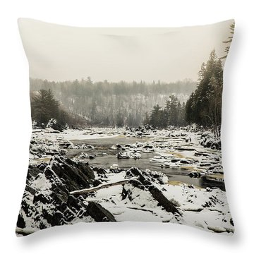 Snowy Morning At Jay Cooke Throw Pillow
