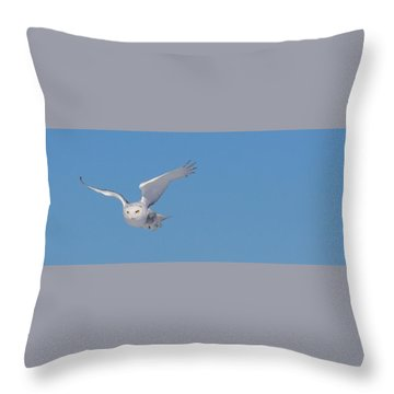 Snowy Owl - Dive Throw Pillow