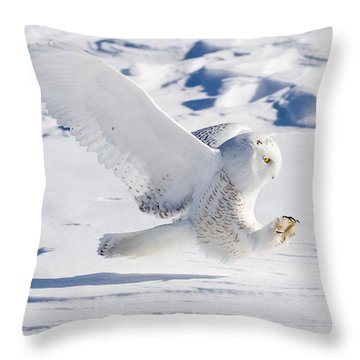 Snowy Owl Pouncing Throw Pillow