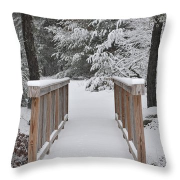 Snowy Path Throw Pillow by Catherine Reusch Daley
