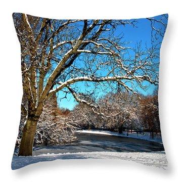 Snowy Pond Throw Pillow