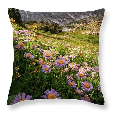 Snowy Range Flowers Throw Pillow