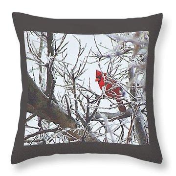 Snowy Red Bird A Cardinal In Winter Throw Pillow