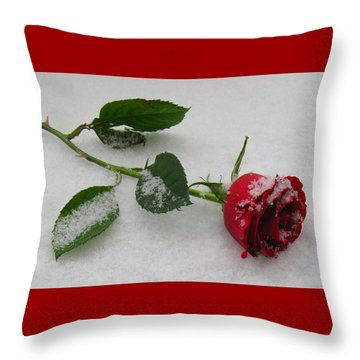 Richard's  Rose Throw Pillow