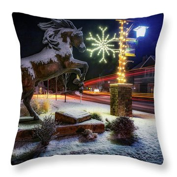 Throw Pillow featuring the photograph Snowy Sisters by Cat Connor