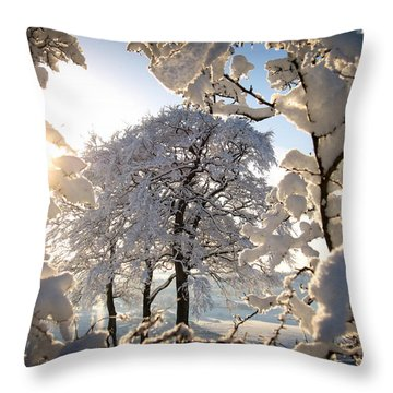 Snowy Trees Throw Pillow by RKAB Works
